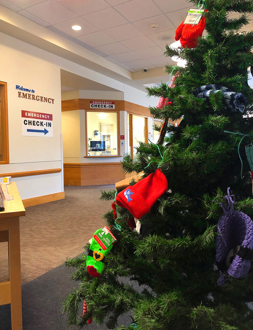 Mid Coast Hospital's Mitten Tree